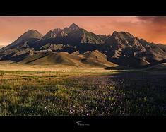 自驾行摄新疆西线
