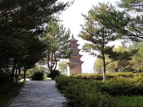 灵光塔旅游景点图片