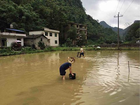 荔波山水依缘农家乐旅游景点攻略图