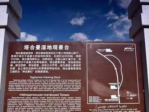 塔合曼高原湿地旅游景点图片