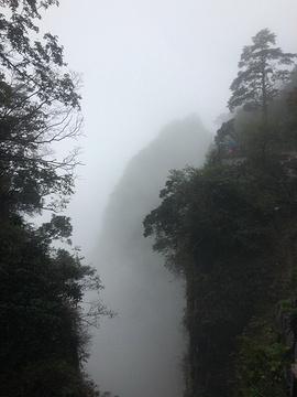 雷洞坪旅游景点攻略图