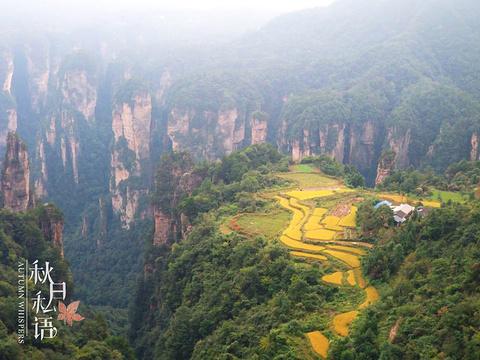 空中田园旅游景点图片