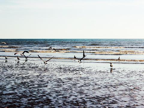 大鹿岛旅游景点图片