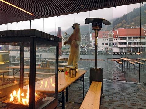 卑尔根水族馆旅游景点攻略图