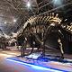 世界恐龙谷恐龙遗址公园