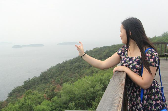 沿途的观景台图片