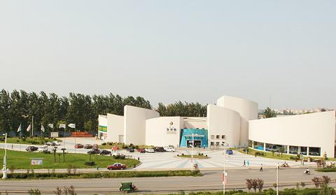 郑州海洋馆的图片