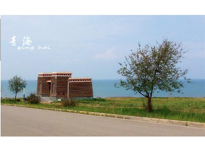 青海湖图片