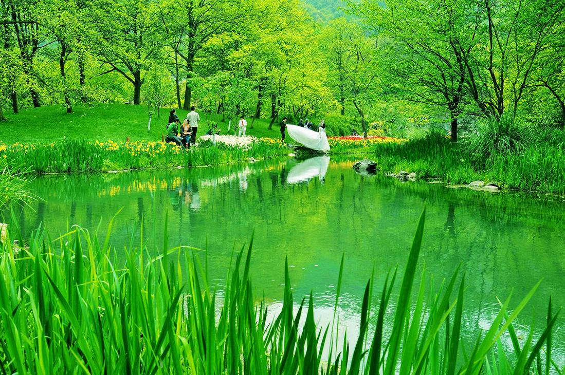 烟花三月游杭州:山野君带您玩转杭州