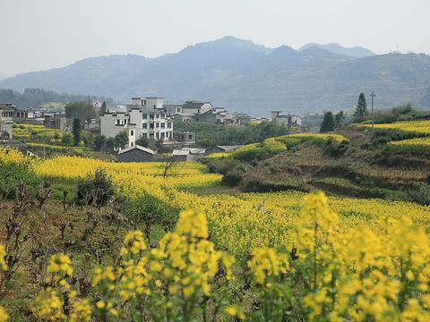 雄村景区旅游景点图片