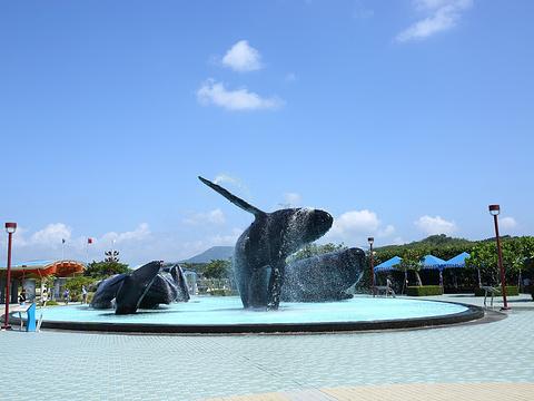 台湾海洋生物博物馆旅游景点图片