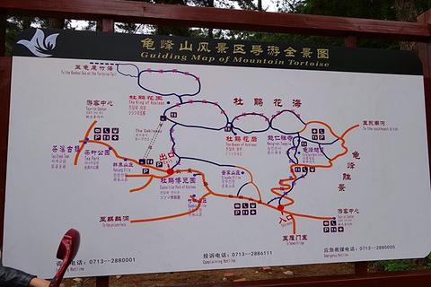 龟峰山旅游景点攻略图
