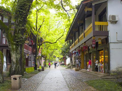 武夷宫旅游景点图片