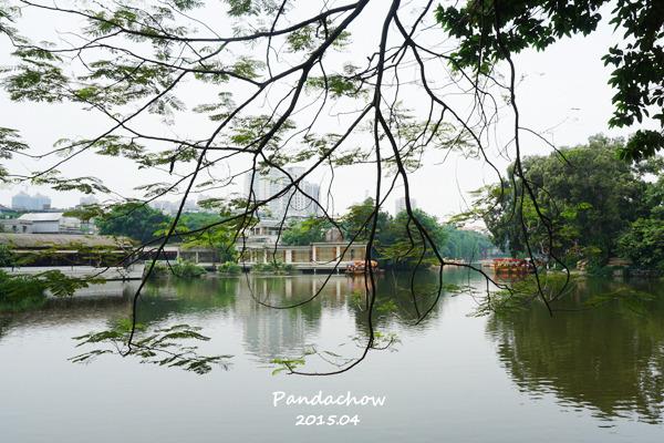 荔湾湖公园图片