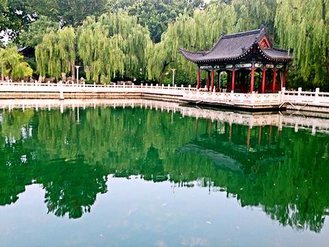 珍珠泉旅游景点图片