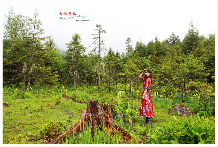2017第一站:千湖山。千湖山藏语称拉姆冬措.
