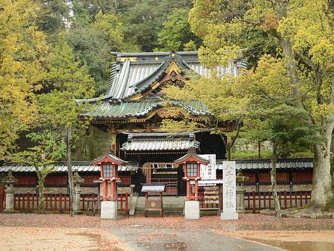 Shizuoka Sengen Jinja Shrine旅游景点图片