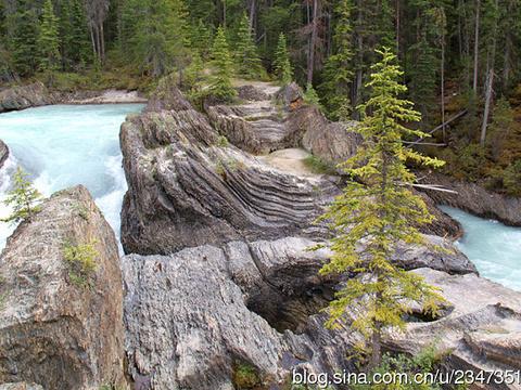 加拿大落基山怀特博物馆旅游景点图片