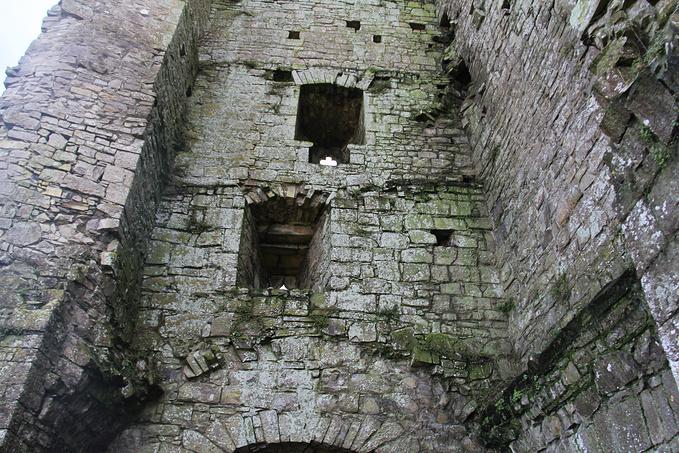 Trim Castle图片