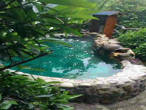 天邑森林温泉旅游景点图片
