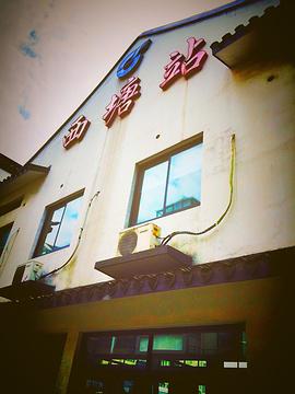 西塘汽车站旅游景点攻略图
