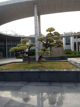 深圳大学旅游景点攻略图