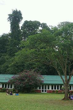 康提皇家植物园旅游景点攻略图