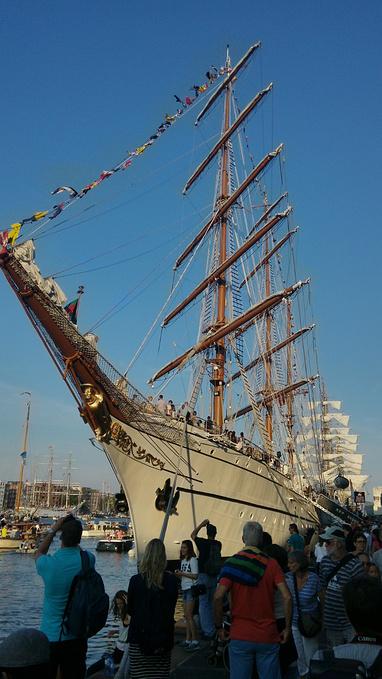 阿姆斯特丹帆船节2015图片