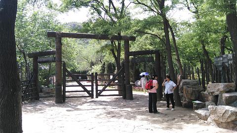 百望山森林公园旅游景点攻略图
