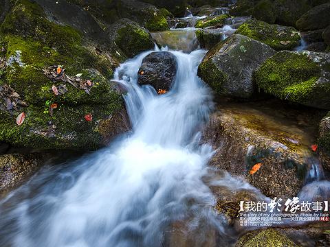 拉法山国家森林公园旅游景点图片