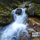 拉法山国家森林公园