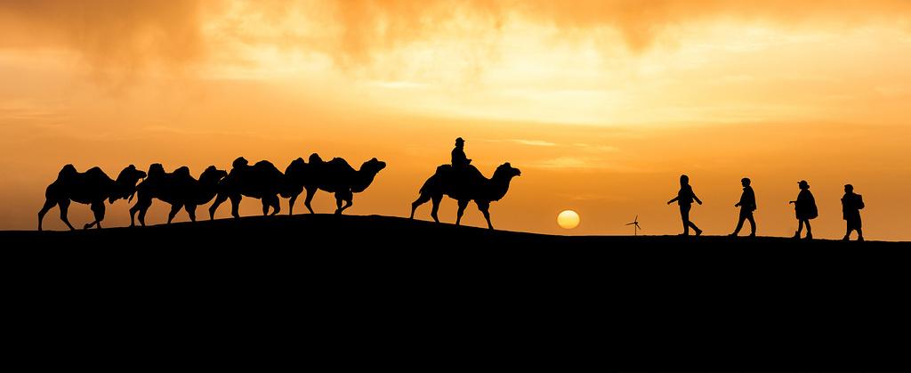额济纳之行,沙漠中的奇迹