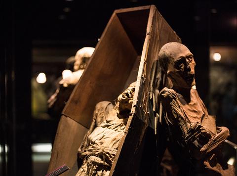 墨西哥木乃伊博物馆旅游景点攻略图