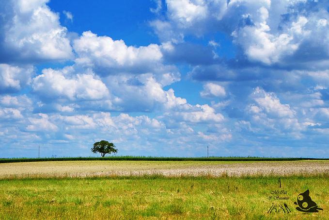 沿途美景图片
