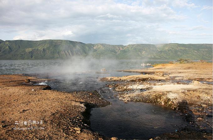 博戈里亚湖图片