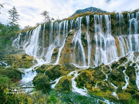 诺日朗瀑布旅游景点图片
