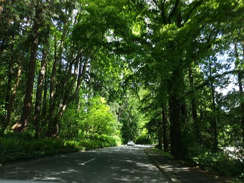 斯坦利公园旅游景点攻略图