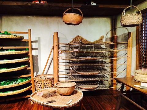中国丝绸博物馆旅游景点图片