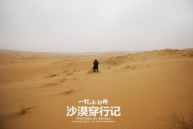 和沙漠的一百天图片_飘雪的冬天,横穿乌兰布和沙漠_银川旅游攻略_自助游攻略_去 ...