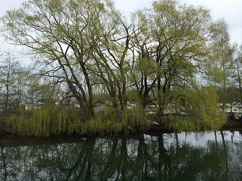 湖滨区旅游景点图片