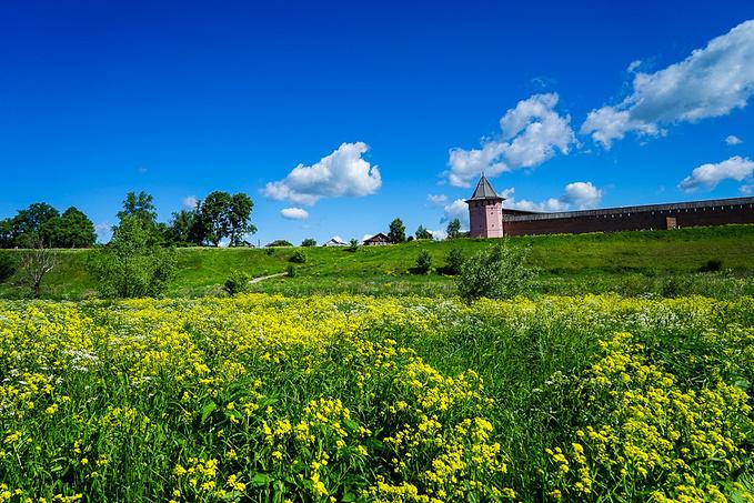 苏兹达尔的田园气息图片