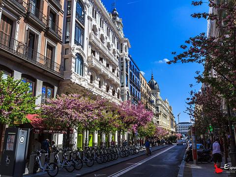 马约尔广场旅游景点图片