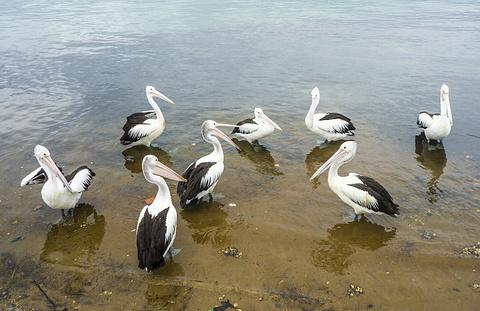 伊拉瓦拉湖旅游景点攻略图