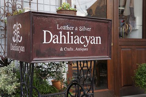 DahliaCyan旅游景点攻略图