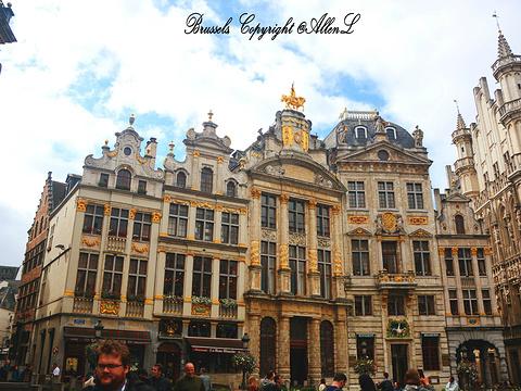 布鲁塞尔大广场旅游景点图片