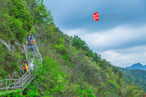 四明山国家森林公园的图片