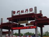 菏泽旅游景点攻略图片
