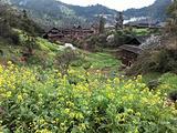 柳州旅游景点攻略图片