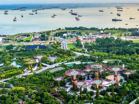 滨海堤坝旅游景点图片
