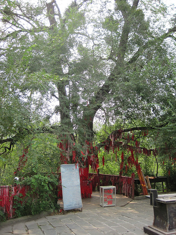 新宾满族风情园_2021...有满族信仰的萨满的萨满堂,另外还有文庙,道观,寺庙的 ...